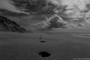 Paisagem Natural/Praia do Rodanho