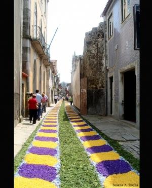 Gentes e Locais/ Floreados I - Caminha 