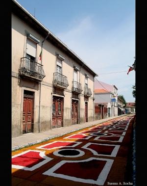 Gentes e Locais/ Floreados II - Caminha 