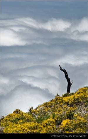 /Acima das Nuvens