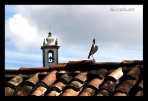 Outros/Pássaro de Pedra...