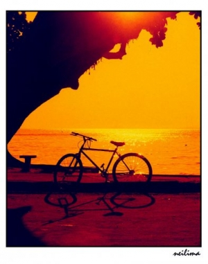 Outros/Uma bike ao por de sol.