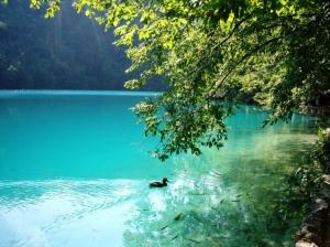 Paisagem Natural/Lago