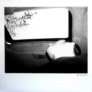 /polaroids 8