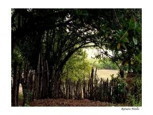 Paisagem Natural/O Portão do Paraíso.