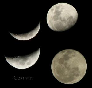 /Fases da Lua