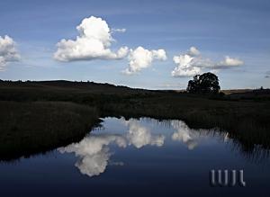 /Espelho d'água
