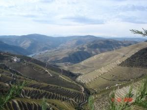 /As vinhas do Douro
