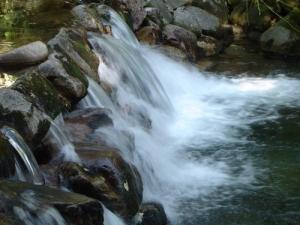 /Água em força
