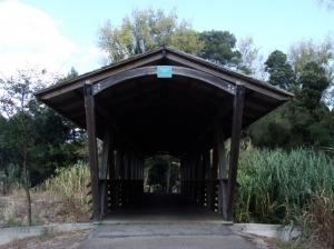 Outros/parece uma ponte no Tenasse