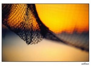 Outros/Por de sol na rede!