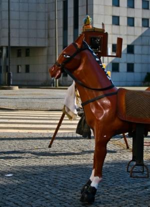 Gentes e Locais/Foto do Cavalo