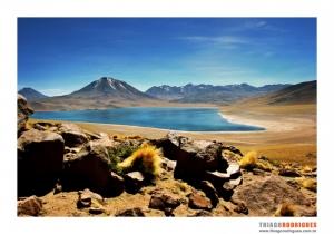Paisagem Natural/Lagunas Altiplânicas