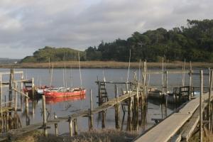 Paisagem Natural/Cais... Lagoa Obidos
