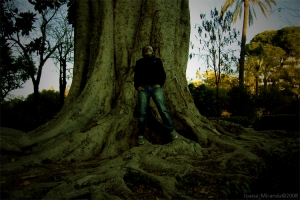 Gentes e Locais/Big tree