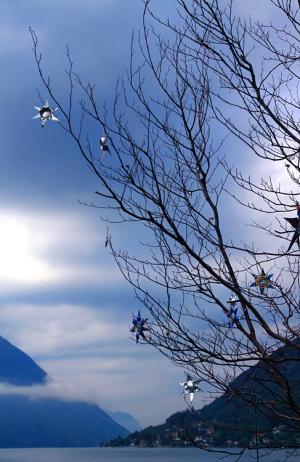 Paisagem Natural/Natal Azul