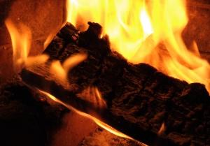Macro/fire
