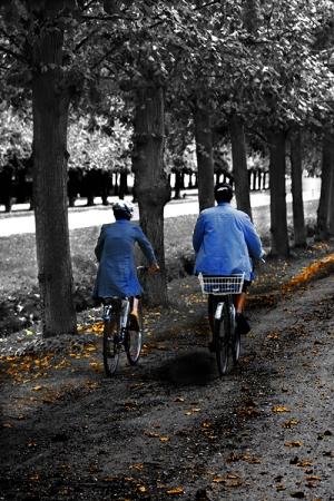 Gentes e Locais/1. A walk in the garden