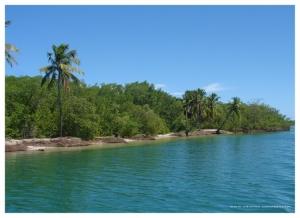 Paisagem Natural/Laguna