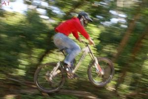 Desporto e Ação/Downhill Sintra II