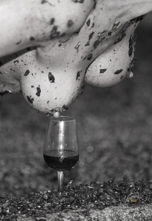 /Wine & Body 33