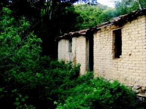 Outros/Casa no meio do mato...