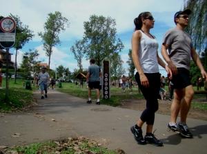 Paisagem Urbana/Curitiba no parque