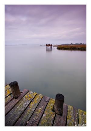 /distant shore