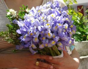 Outros/É primavera
