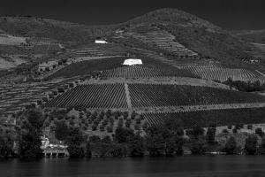 /Rio Douro;Socalcos de Vinhas;Set.2007