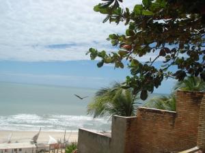 Paisagem Natural/Praia do Morro Branco