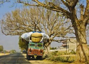 /Pelas estradas da Índia #2