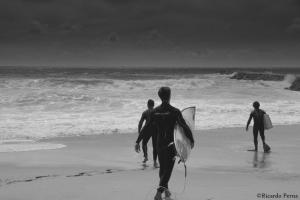 Desporto e Ação/Surf's up