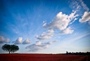 /Happy sky
