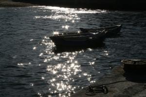 Gentes e Locais/estrelas no mar
