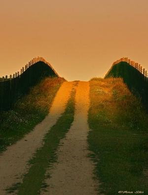 /caminho, sempre para a Luz...