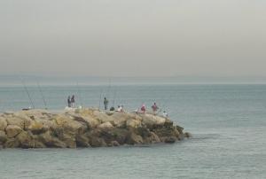 /Neblina Matinal e os Pescadores à Linha...