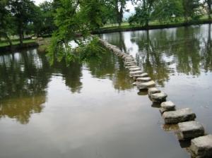 Paisagem Natural/Ponte Pedonal