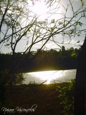 Retratos/Lago municipal de Cascavel - PR