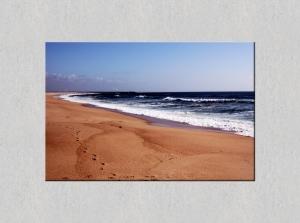 Paisagem Natural/Areal da Praia da Figueira da Foz