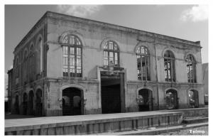 Gentes e Locais/Colégio Luso-Internacional do porto