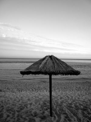 Paisagem Natural/Fica a solidão