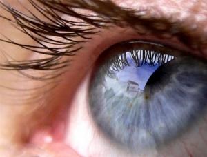 Macro/O meu olhar...