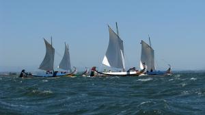 Outros/a regata de moliceiros