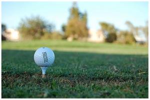 Desporto e Ação/Bola de Golfe