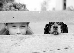 /Arthur e Pinóquio olham através da cerca