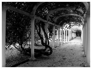 /Jardim Botânico - Rio