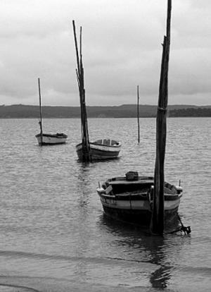 /Barcos presos