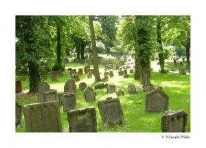/Cemitério Judeu