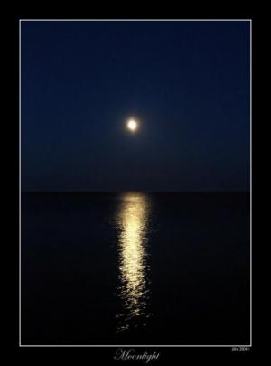 /Moonlight